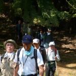 ハイキング 広沢寺温泉→日向山→七沢温泉(2012年10月)